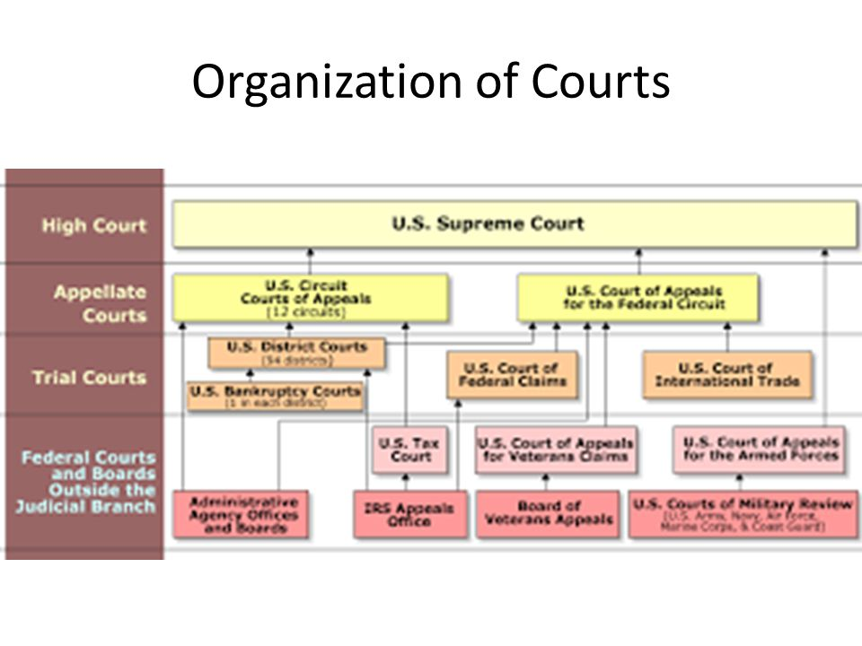 trial and appellate courts What is the difference between trial court and appellate court trial court is a court of first instance appellate court is an appeals court that reviews.