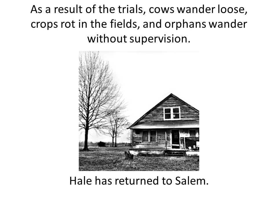 As a result of the trials, cows wander loose, crops rot in the fields, and orphans wander without supervision.