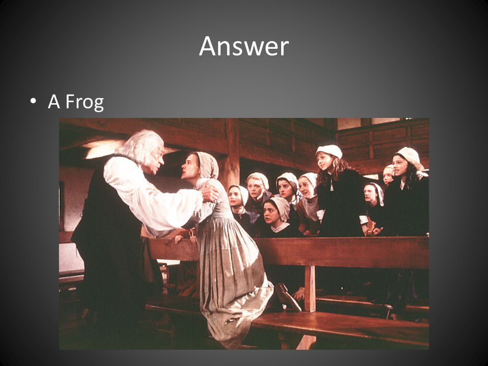 Answer A Frog