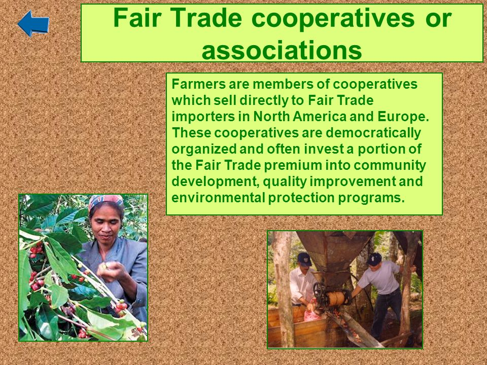 Fair Trade cooperatives or associations