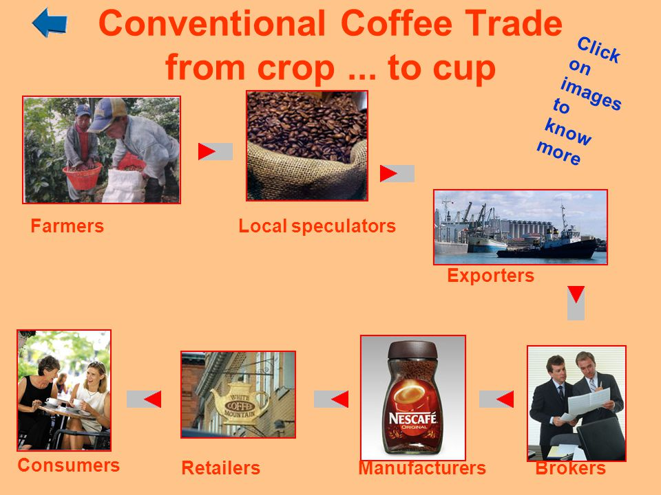 Conventional Coffee Trade from crop ... to cup