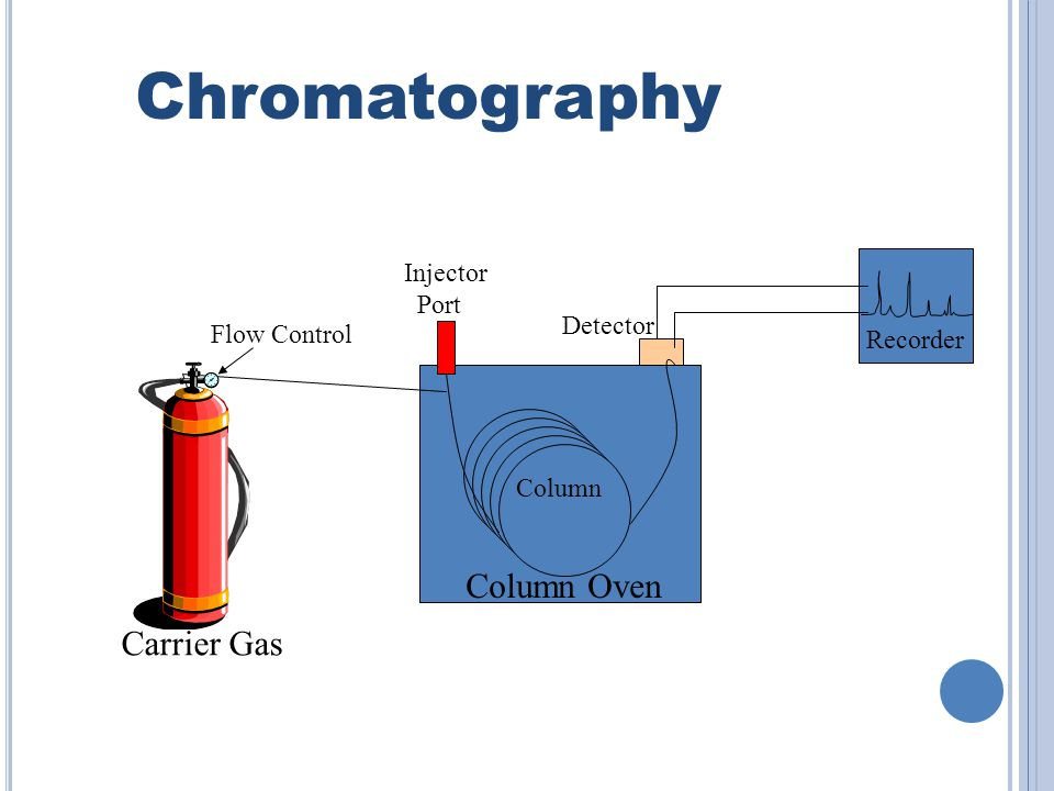 Chromatography Column Oven Carrier Gas Injector Port Detector