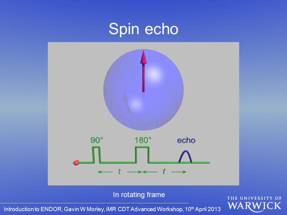 Spin echo Hahn echo In rotating frame