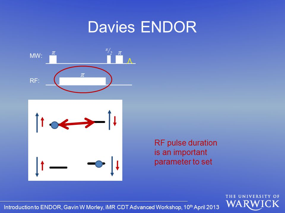 Davies ENDOR RF pulse duration is an important parameter to set