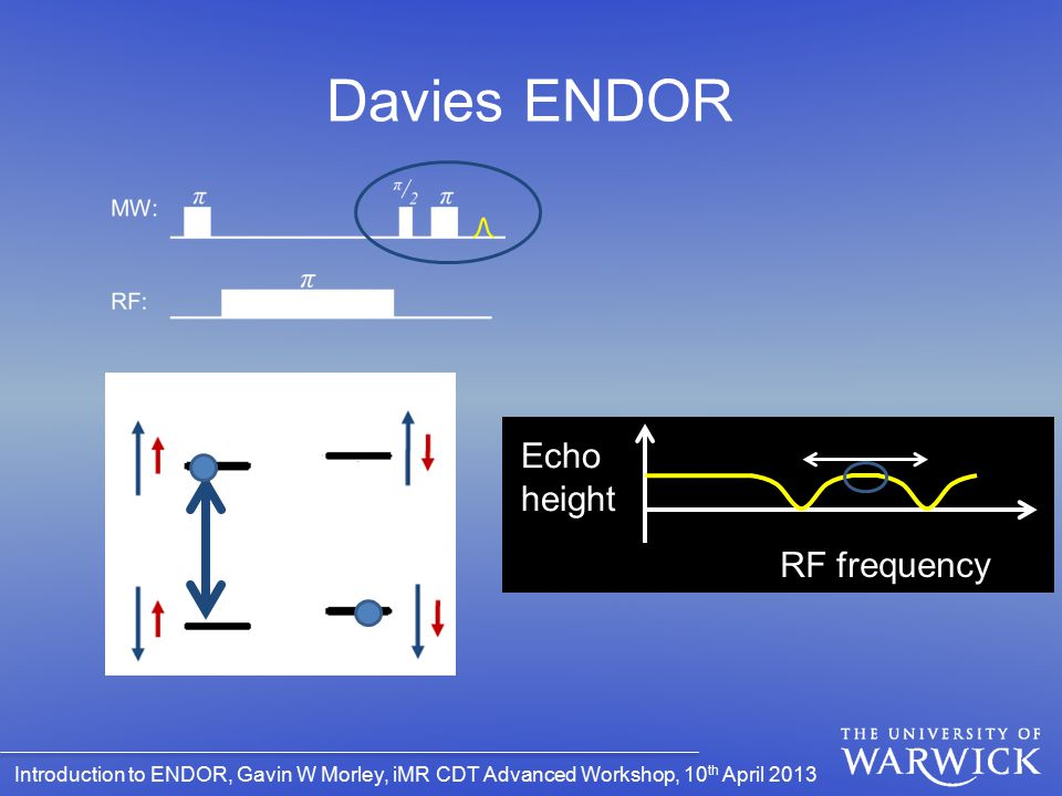 Davies ENDOR Echo height RF frequency