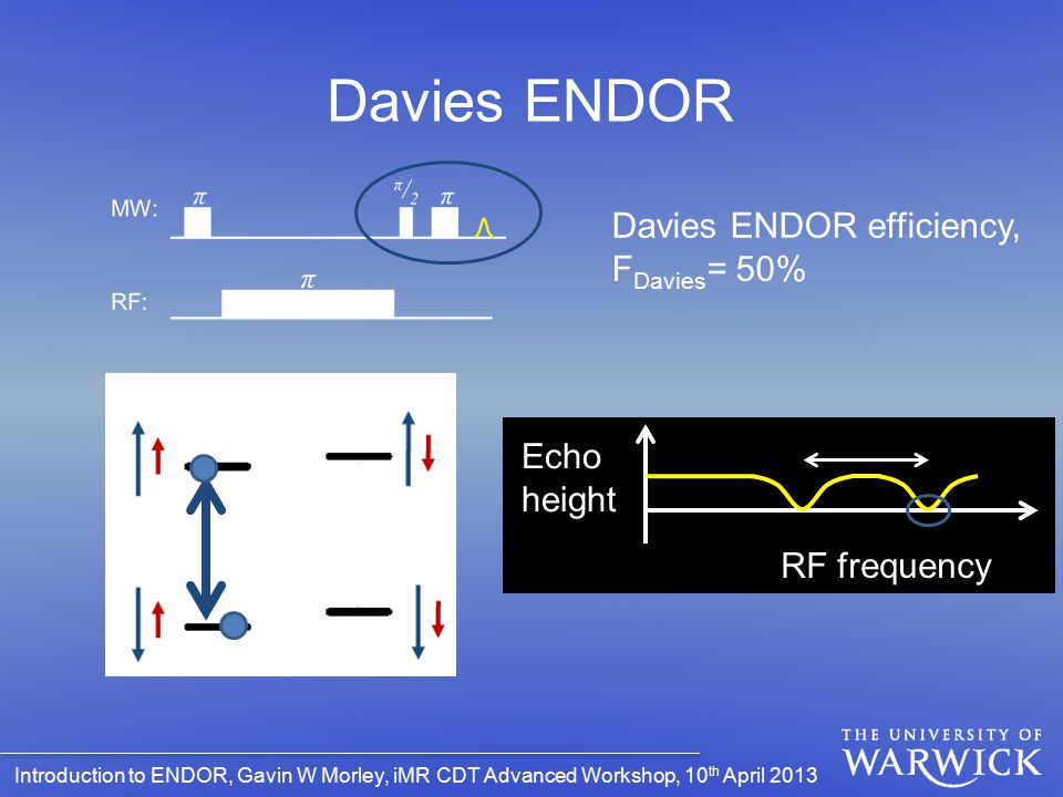 Davies ENDOR Davies ENDOR efficiency, FDavies= 50% Echo height