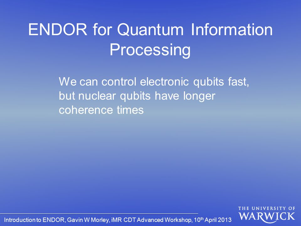 ENDOR for Quantum Information Processing