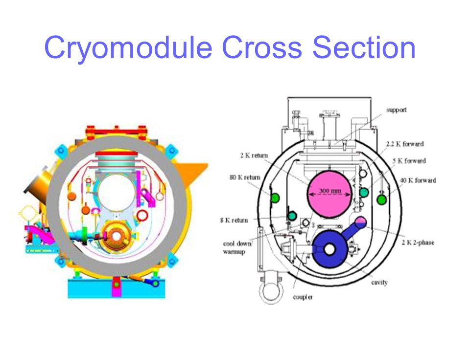Cryomodule Cross Section