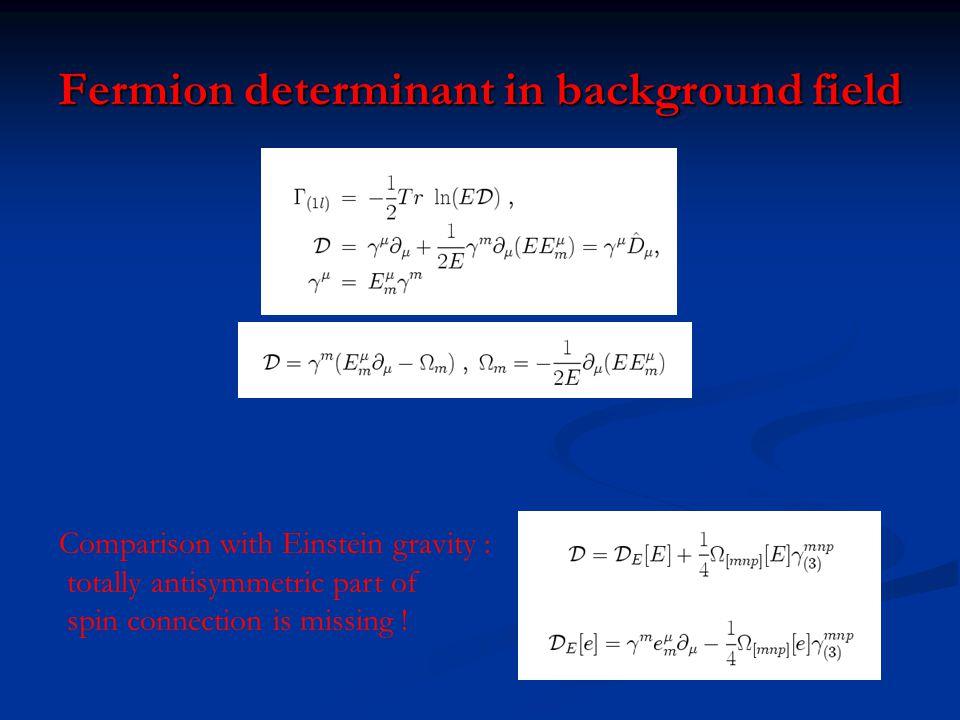 Fermion determinant in background field