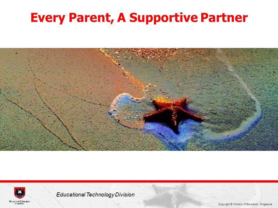 Every Parent, A Supportive Partner