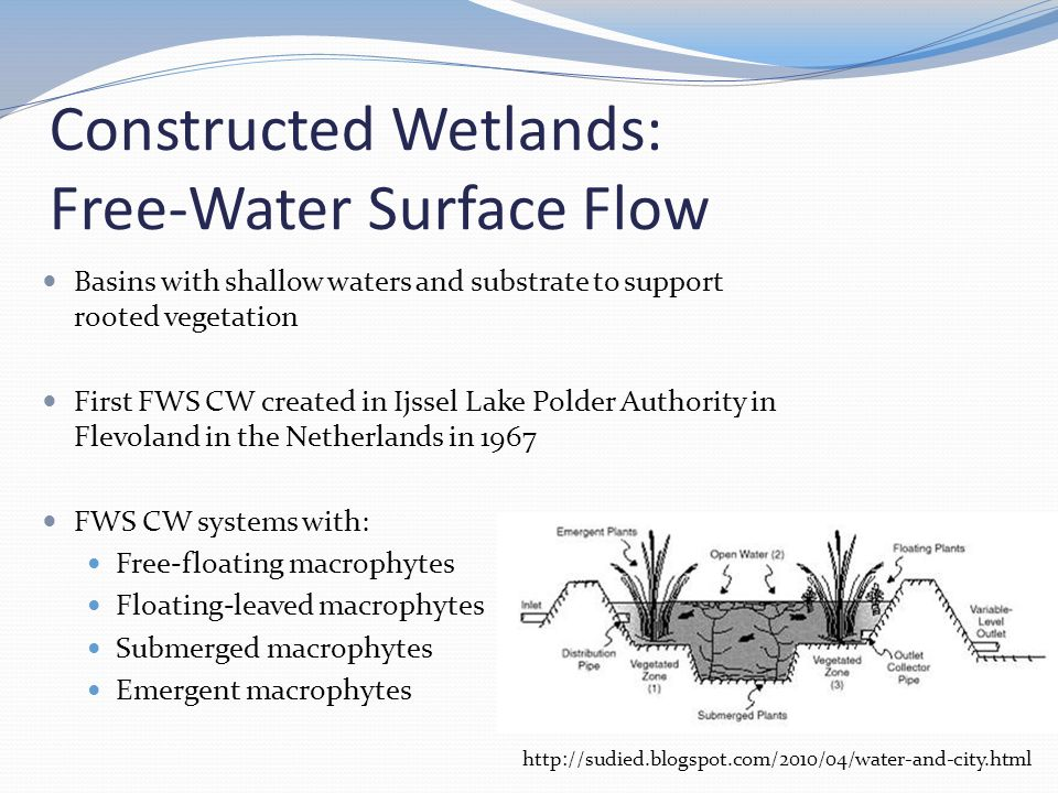 Constructed Wetlands: Free-Water Surface Flow