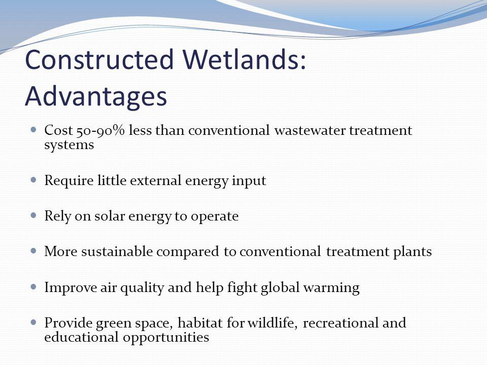 Constructed Wetlands: Advantages
