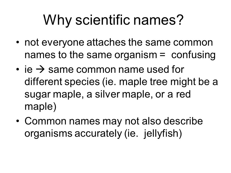 Why scientific names not everyone attaches the same common names to the same organism = confusing.