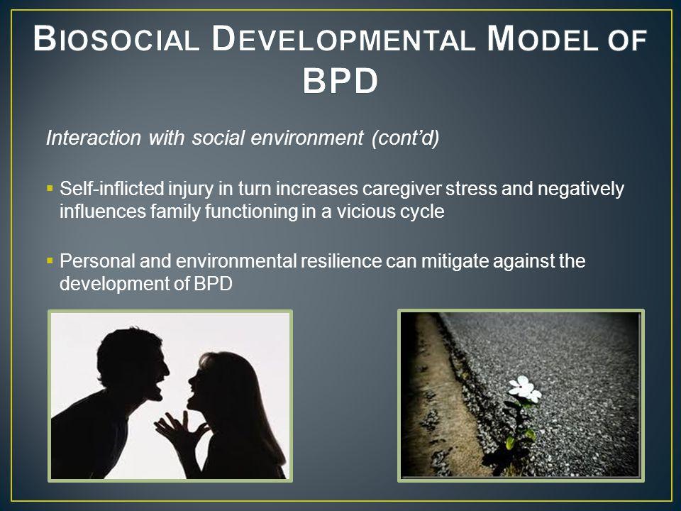 Biosocial Developmental Model of BPD