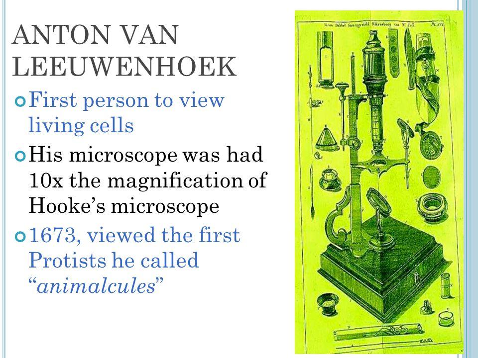 ANTON VAN LEEUWENHOEK First person to view living cells