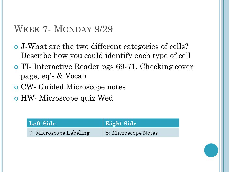 Week 7- Monday 9/29 J-What are the two different categories of cells Describe how you could identify each type of cell.