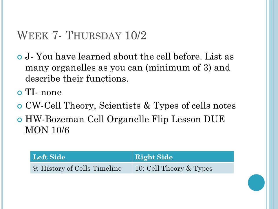 Week 7- Thursday 10/2 J- You have learned about the cell before. List as many organelles as you can (minimum of 3) and describe their functions.