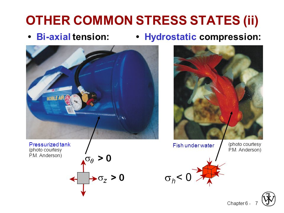 OTHER COMMON STRESS STATES (ii)