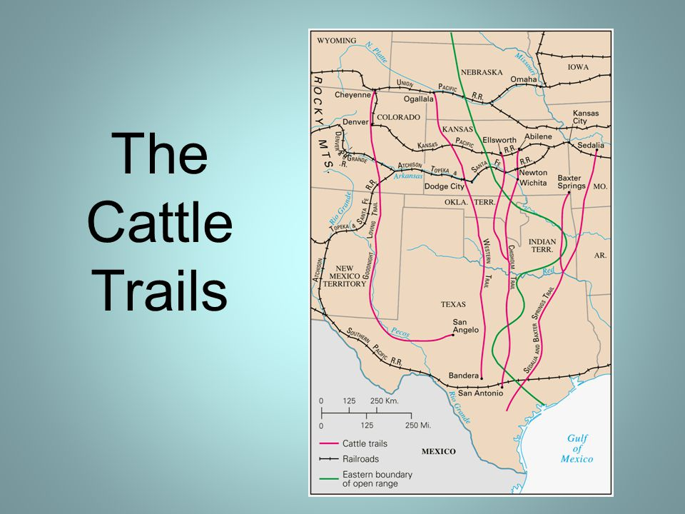 The Cattle Trails