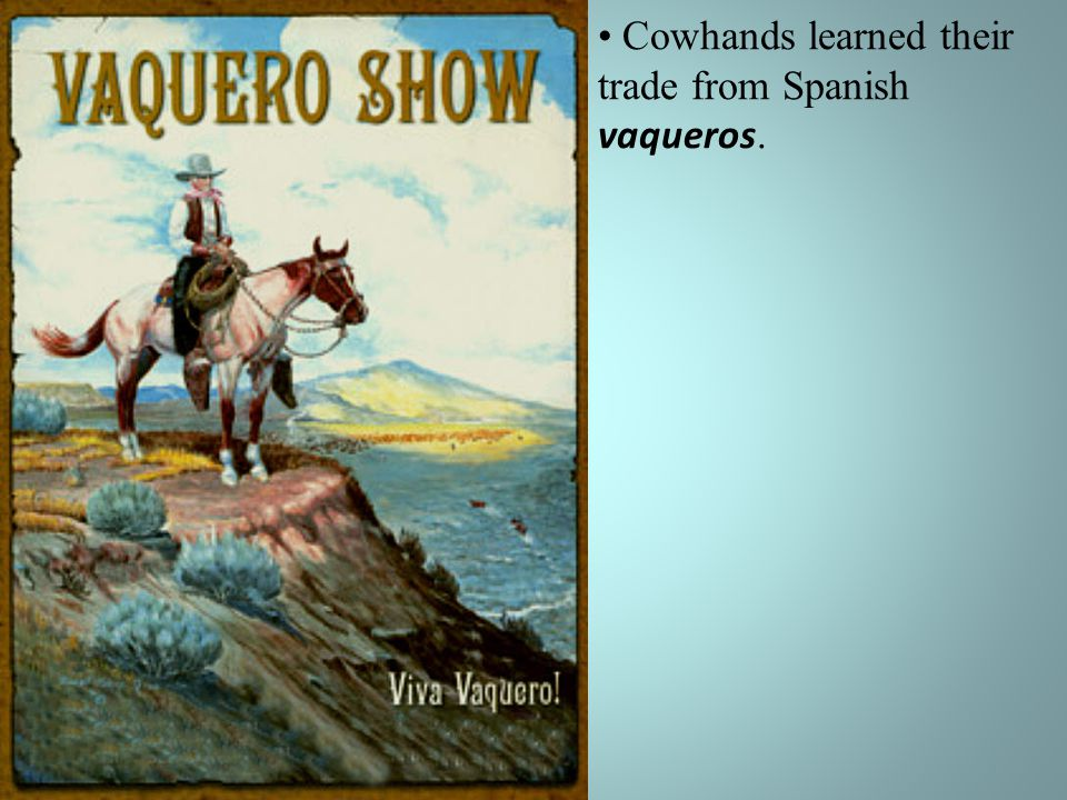 Cowhands learned their trade from Spanish vaqueros.