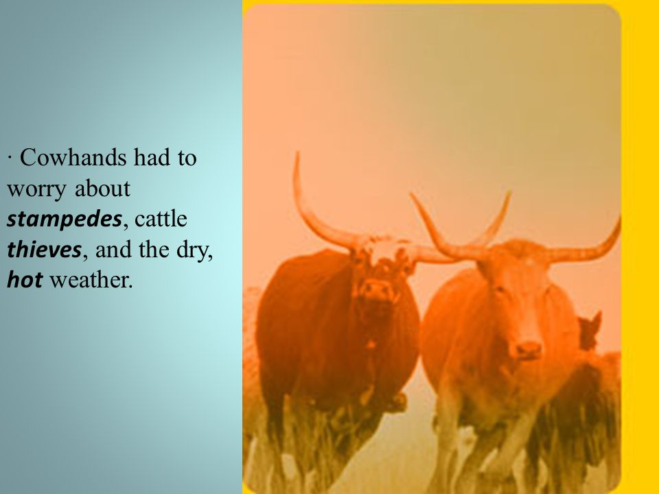 · Cowhands had to worry about stampedes, cattle thieves, and the dry, hot weather.