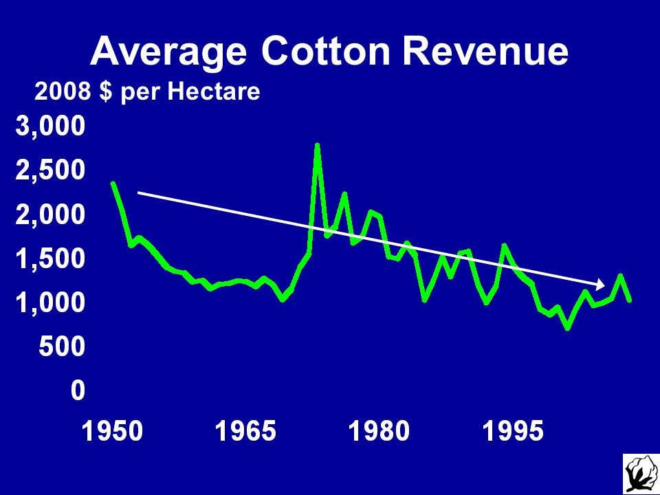 Average Cotton Revenue