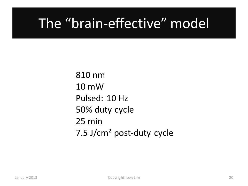 The brain-effective model