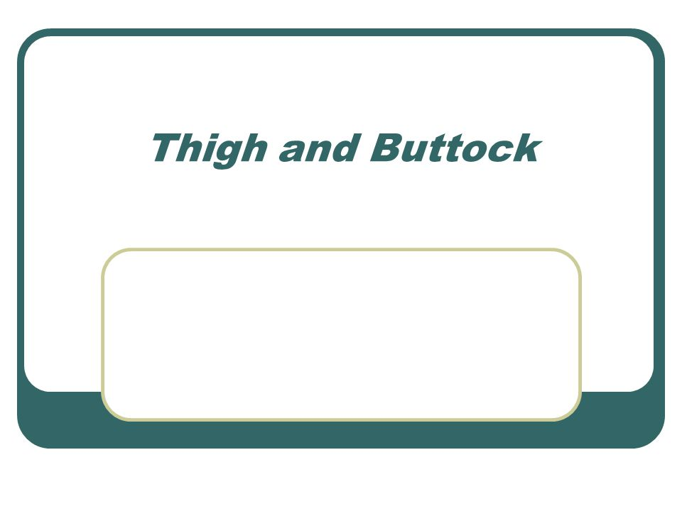 Thigh and Buttock