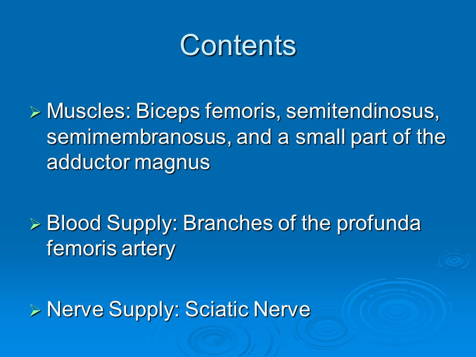 Contents Muscles: Biceps femoris, semitendinosus, semimembranosus, and a small part of the adductor magnus.