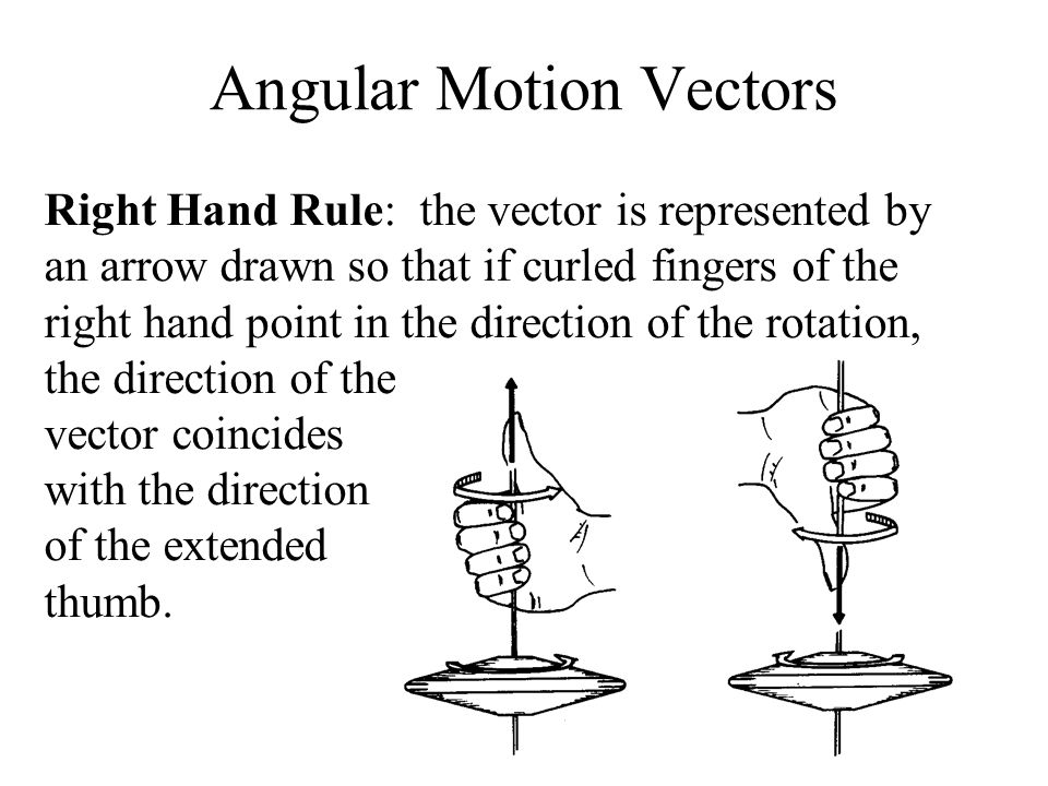 Angular Motion Vectors