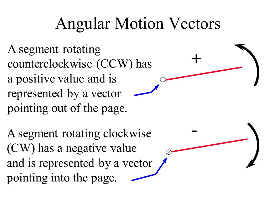 linear motion and vectors essay Vectors - motion and forces in two dimensions the physics classroom » physics tutorial » 1-d kinematics » sample problems and solutions.