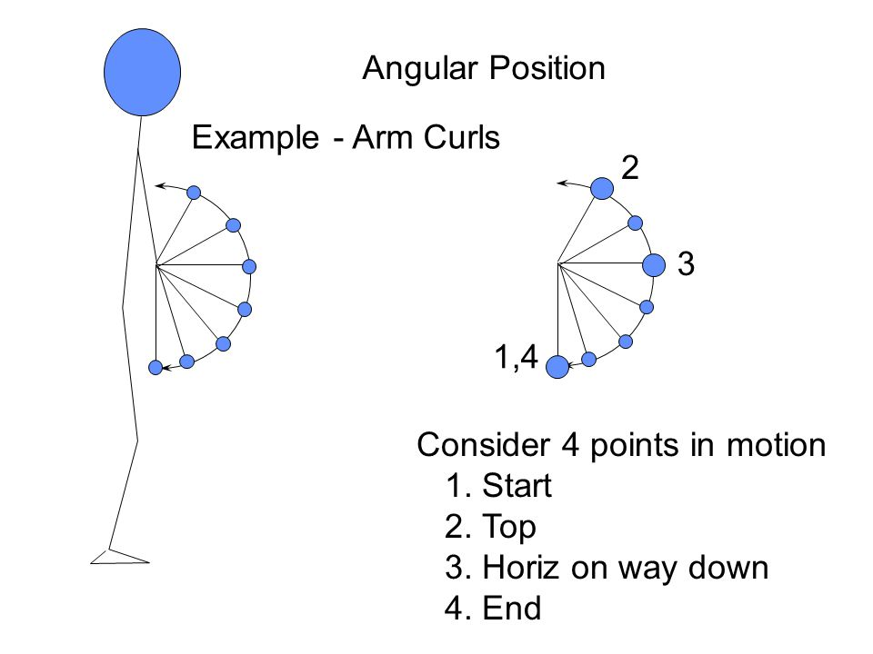Angular Position Example - Arm Curls. 2. 3. 1,4. Consider 4 points in motion. 1. Start. 2. Top.