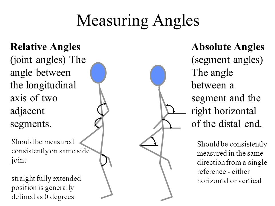 Measuring Angles Relative Angles (joint angles) The angle between the longitudinal axis of two adjacent segments.