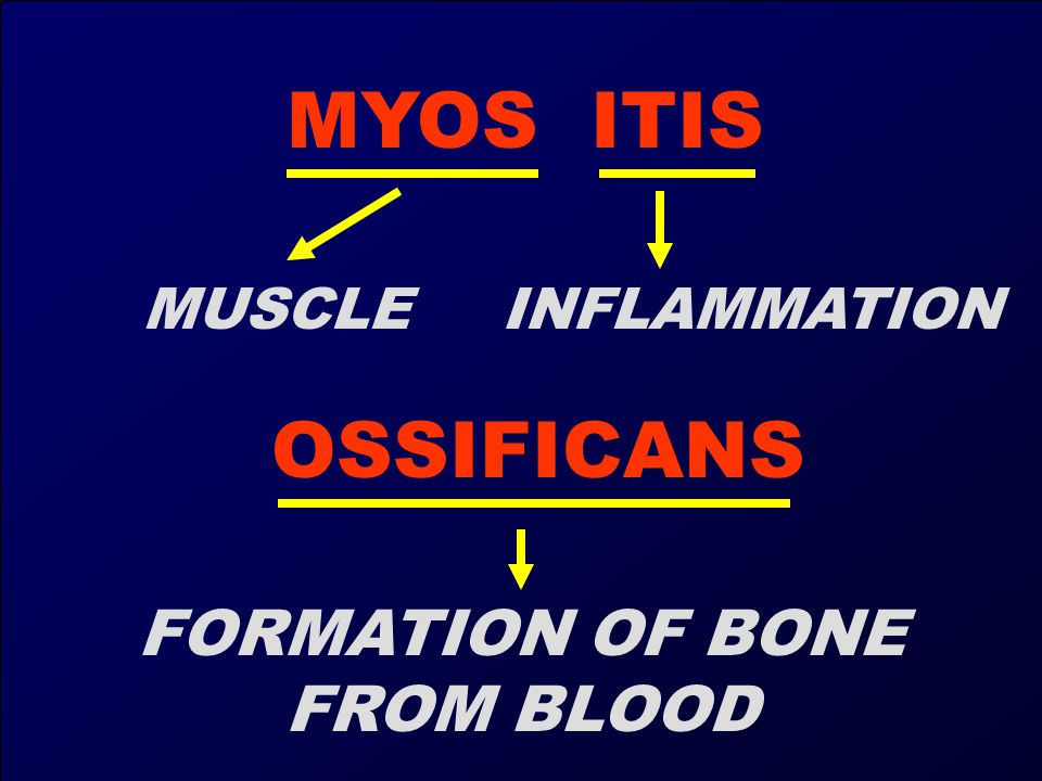 FORMATION OF BONE FROM BLOOD