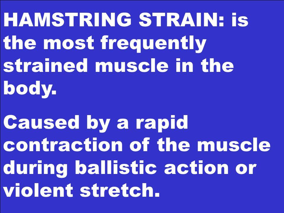 HAMSTRING STRAIN: is the most frequently strained muscle in the body.
