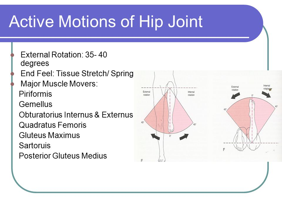 Active Motions of Hip Joint