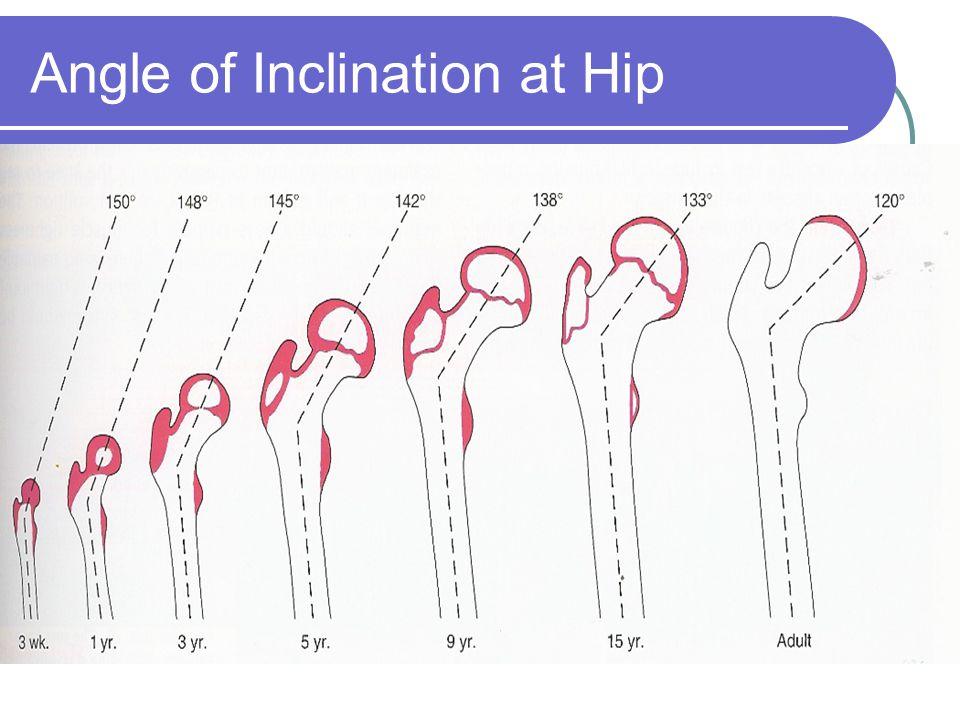 Angle of Inclination at Hip