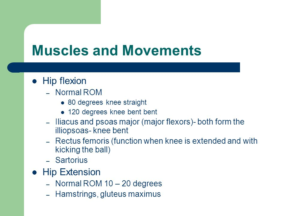 Muscles and Movements Hip flexion Hip Extension Normal ROM
