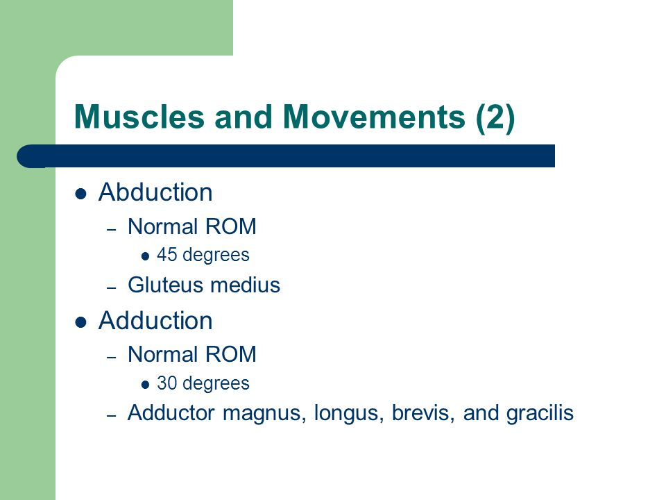 Muscles and Movements (2)