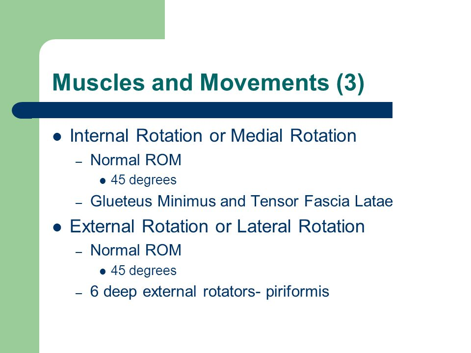 Muscles and Movements (3)