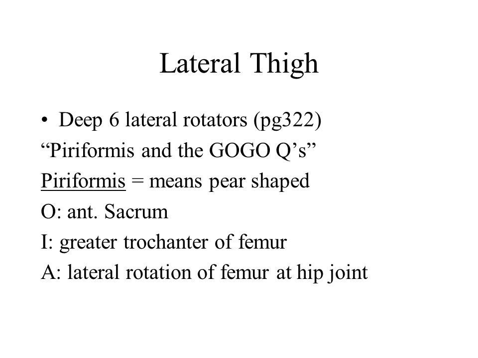 Lateral Thigh Deep 6 lateral rotators (pg322)