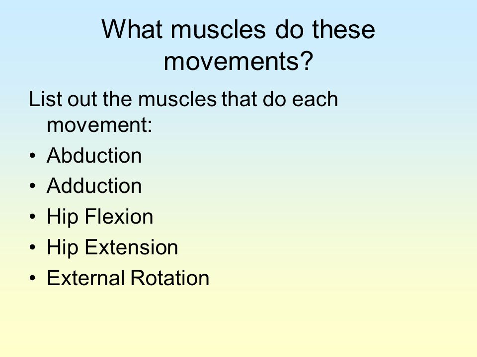 What muscles do these movements