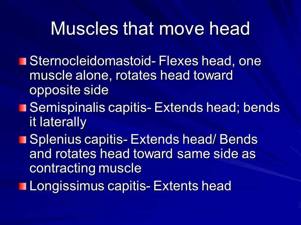 Muscles that move head Sternocleidomastoid- Flexes head, one muscle alone, rotates head toward opposite side.