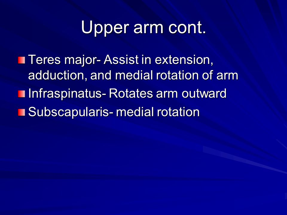 Upper arm cont. Teres major- Assist in extension, adduction, and medial rotation of arm. Infraspinatus- Rotates arm outward.