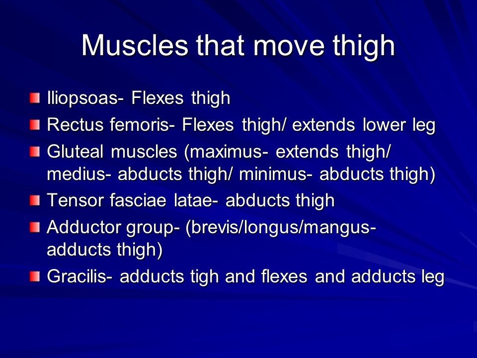 Muscles that move thigh