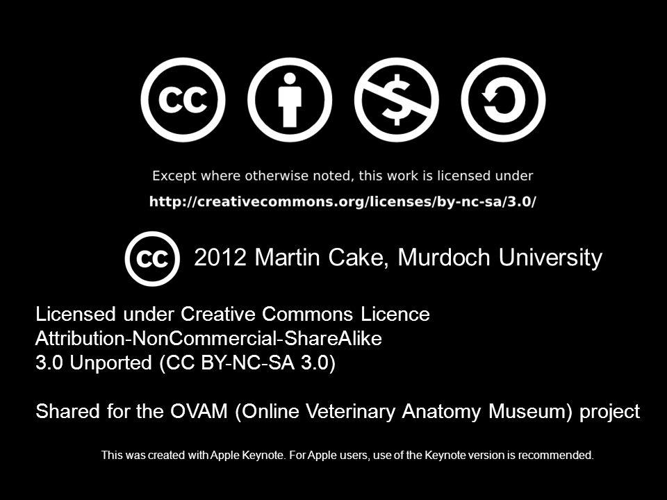 2012 Martin Cake, Murdoch University