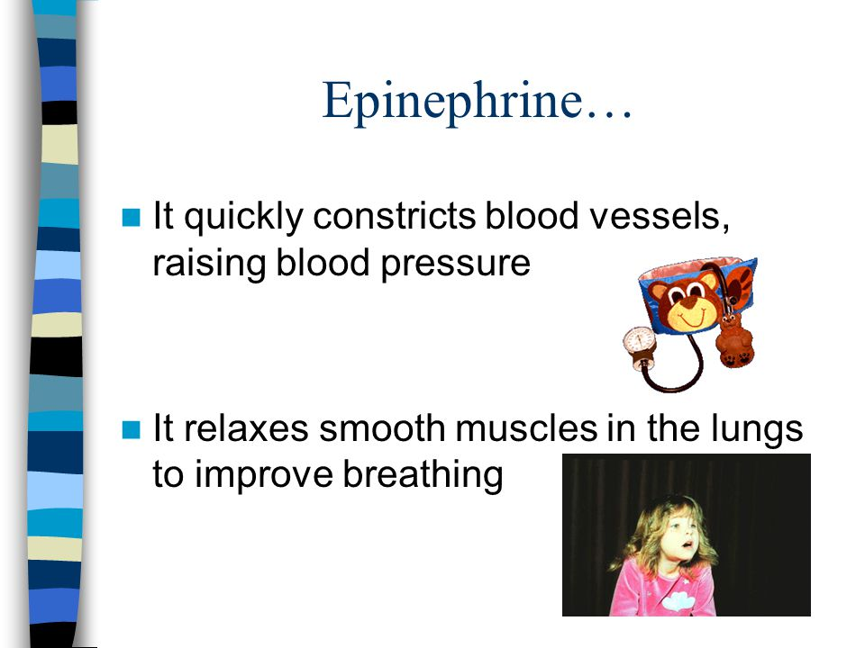 Epinephrine… It quickly constricts blood vessels, raising blood pressure.