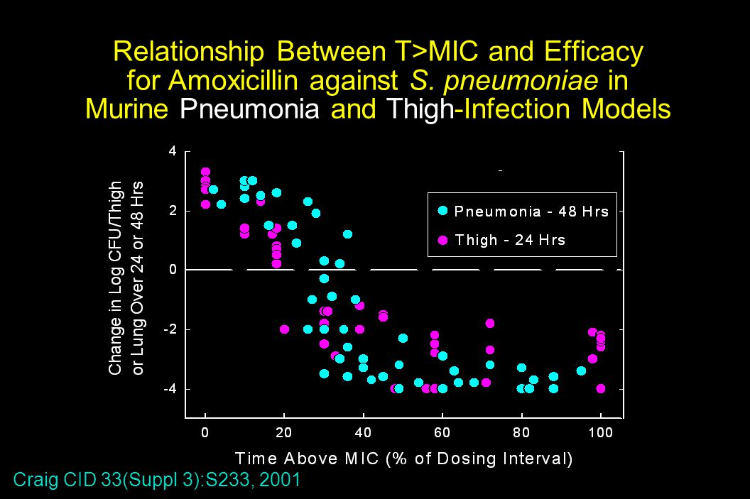 Relationship Between T>MIC and Efficacy for Amoxicillin against S