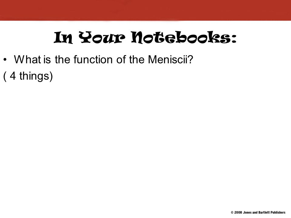 In Your Notebooks: What is the function of the Meniscii ( 4 things)