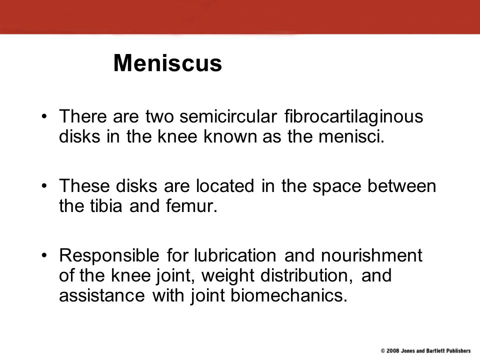 Meniscus There are two semicircular fibrocartilaginous disks in the knee known as the menisci.